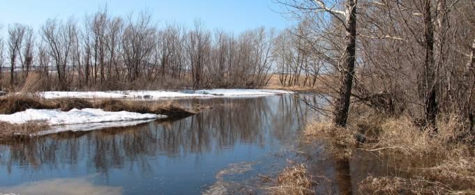 Погода в Україні на четвер, 4 березня