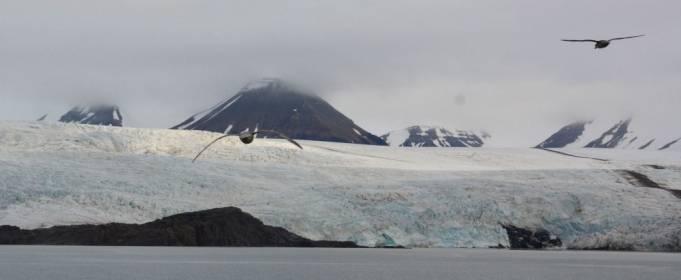 К концу века средняя температура в Арктике может вырасти на 20 градусов