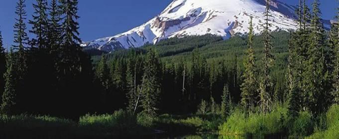 В США наблюдается всплеск активности вулкана Худ