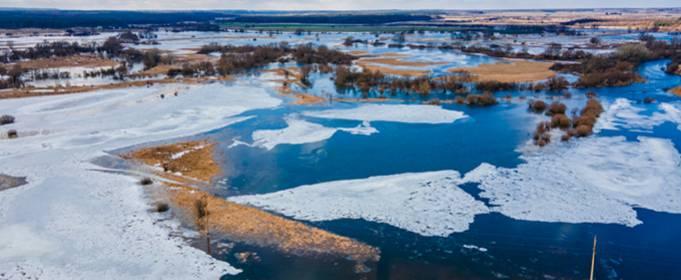 На Волыни вышла из берегов река Западный Буг (фото, видео)