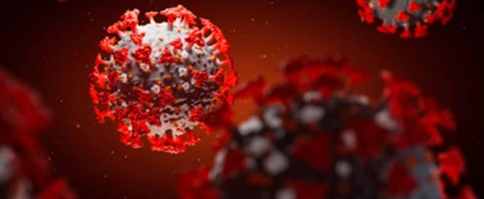 В Індії виявили новий вид двічи мутованого коронавірусу
