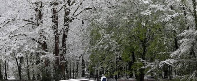 У Словенії вдарили рекордні морози