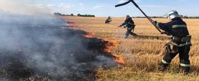 За сутки в экосистемах Украины произошло 195 пожаров