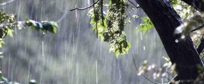 Погода в Україні на середу, 21 квітня