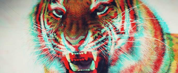 Китайський гороскоп на травень: Тигр
