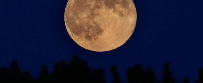 Розовая суперлуна осветит ночное небо 26 апреля