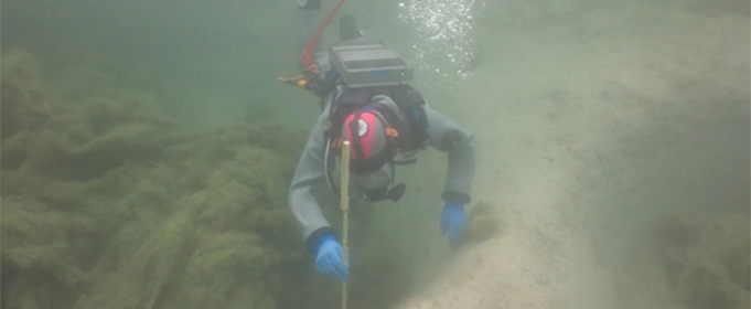 На дні озера в Швейцарії виявили поселення бронзового століття
