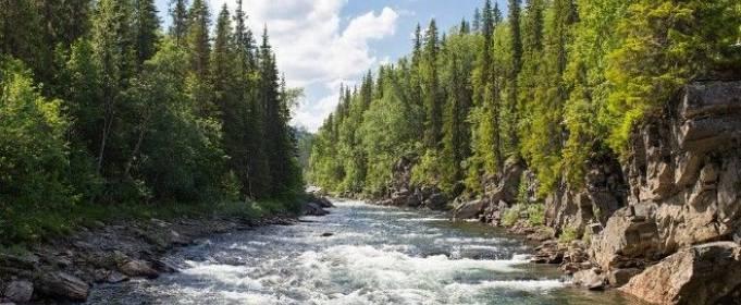 На заході України можливі грози і підйом води в річках