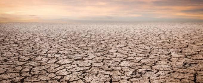 Температура Земли в 2020 году стала рекордно высокой за 3 млн лет