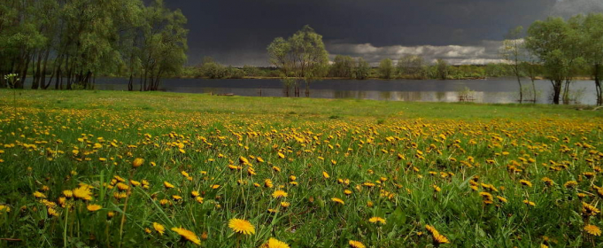 Погода в Україні на четвер, 13 травня