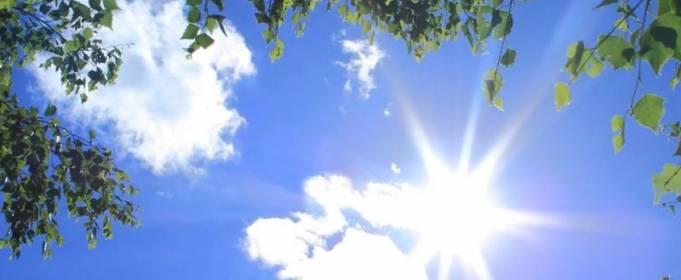 Погодные приметы на 11 июня