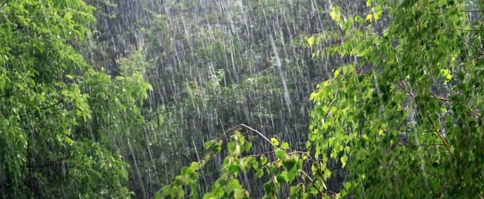 Погода в Україні на вівторок, 15 червня