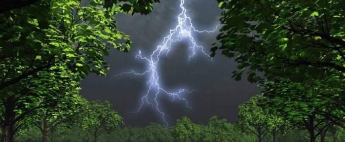 Погода в Украине на четверг, 17 июня