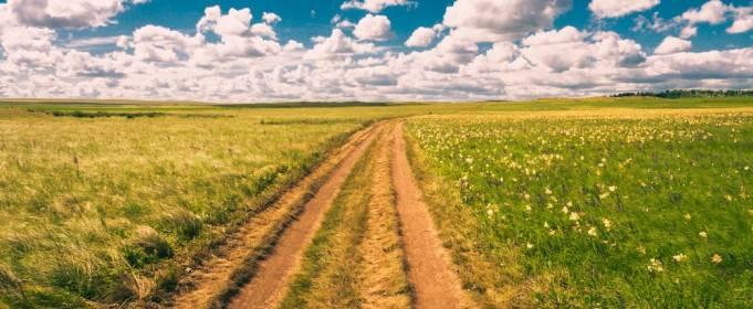 Погода в Україні на п'ятницю, 23 липня