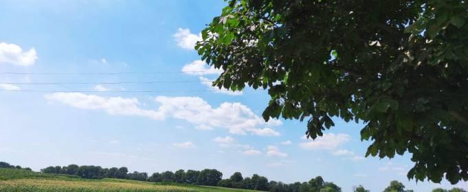 Погода в Україні на неділю, 1 серпня