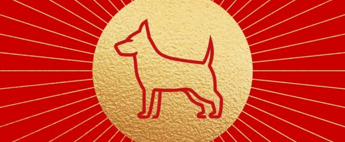 Китайський гороскоп на серпень: Собака