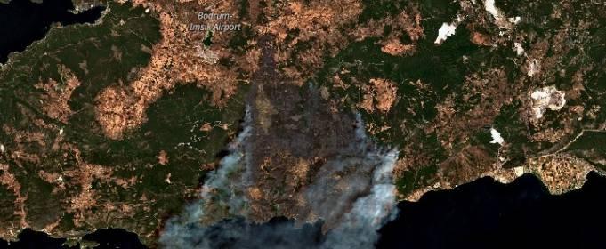 Лесные пожары унесли 8 жизней на юге Турции, 10 тысяч человек эвакуированы