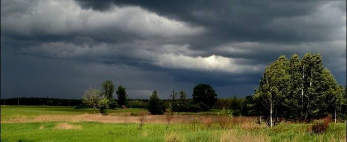 Погода в Украине на четверг, 5 августа