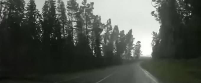 У Білорусі пронісся потужний ураган. Відео