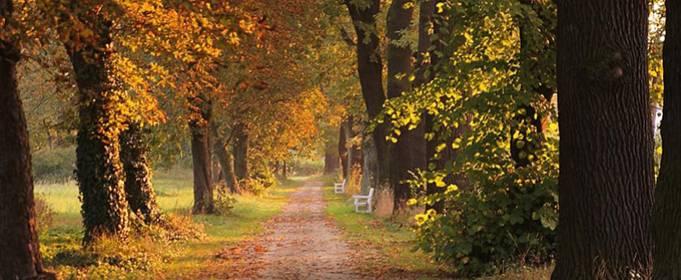 Pogoda w Polsce na 18.09.2021