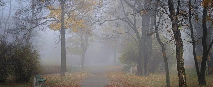 Погода в Украине на среду, 13 октября