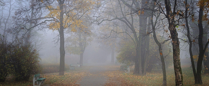 Погода в Україні на середу, 13 жовтня